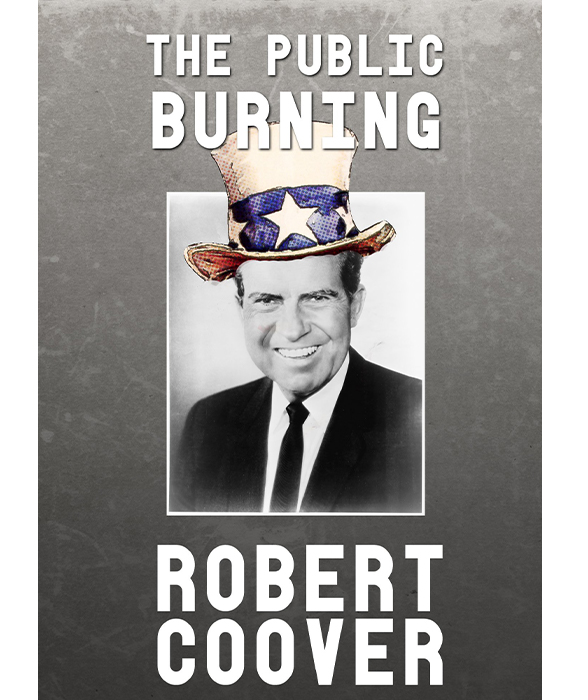 Book cover for The Public Burning