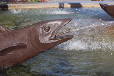 A bronze sculpture of fish shooting a stream of water from its mouth.
