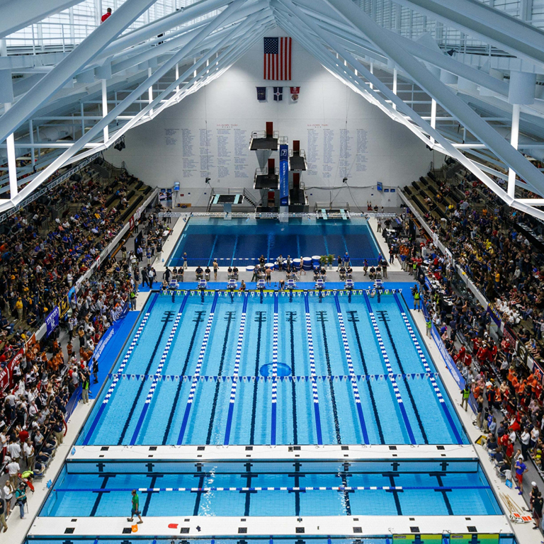 Overhead view of a nine-lane pool. Fans fill the stands to the right and left of the pool.