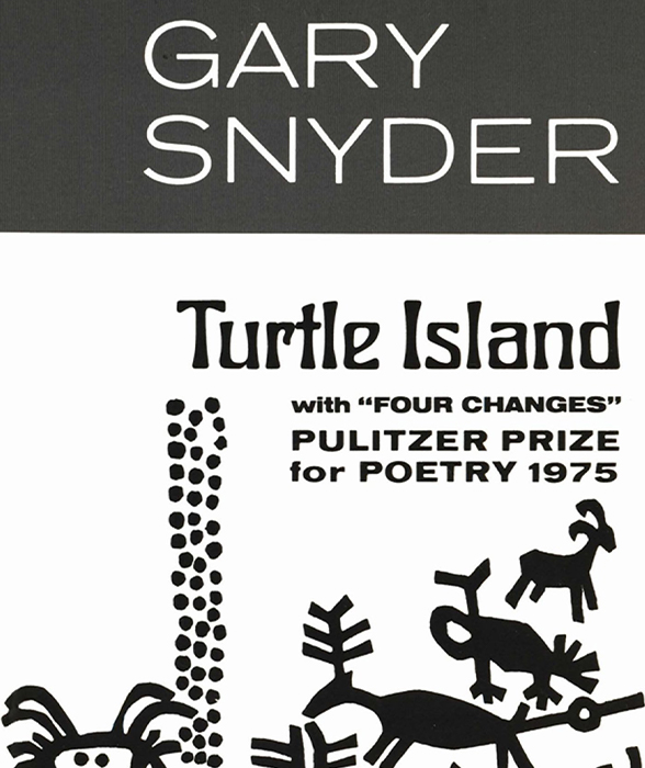 Book cover for Turtle Island