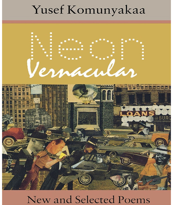 Book cover for Neon Vernacular