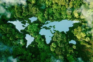 A lake shaped like the world map in the middle of a forest